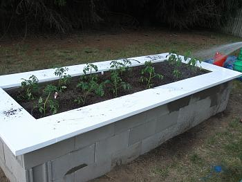 Click image for larger version.  Name:GARDEN 12.jpg Views:4 Size:94.8 KB ID:6483