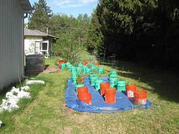 Click image for larger version.  Name:GARDEN 1.jpg Views:3 Size:97.9 KB ID:6504